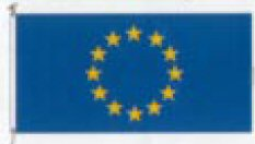 Council of Europe Flag - 72